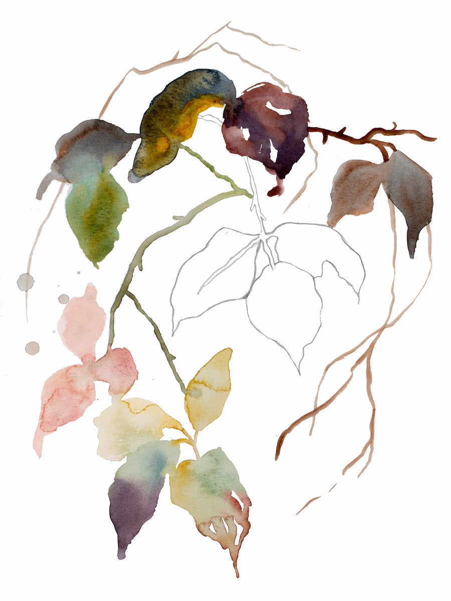 "9"" x 12"" original watercolor botanical nature line painting of plant, leaves and branches in an expressive, impressionist, minimalist, modern style by contemporary fine artist Elizabeth Becker. Soft pink, gold, yellow, blue green, deep red and white colors."