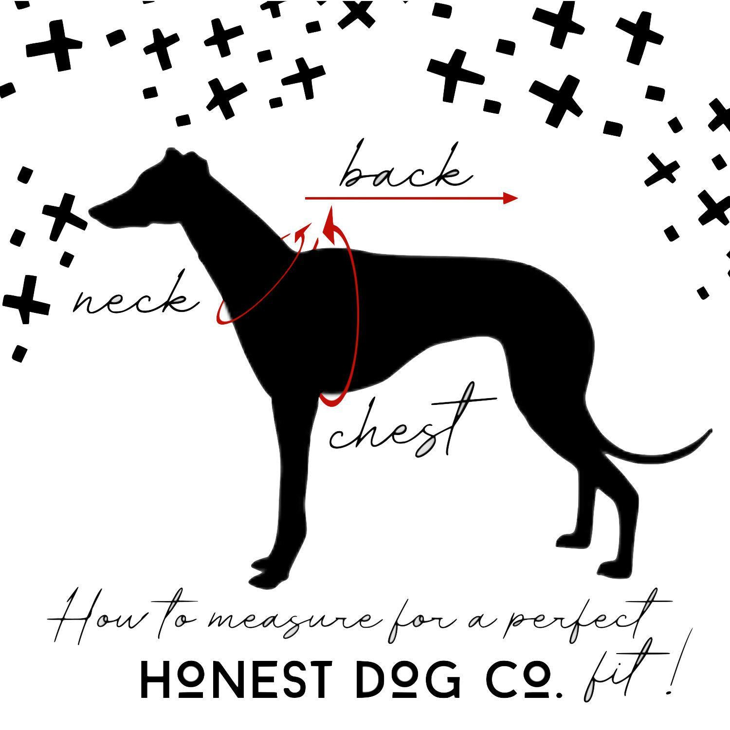 Custom One Color Text or Graphic Dog Dress-TheHonestDog