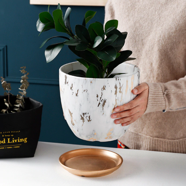 Mikku Ceramic Flower Pot