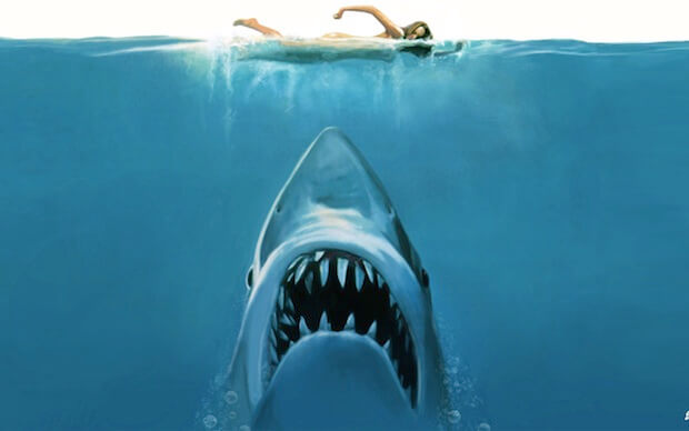 Jaws In The Water