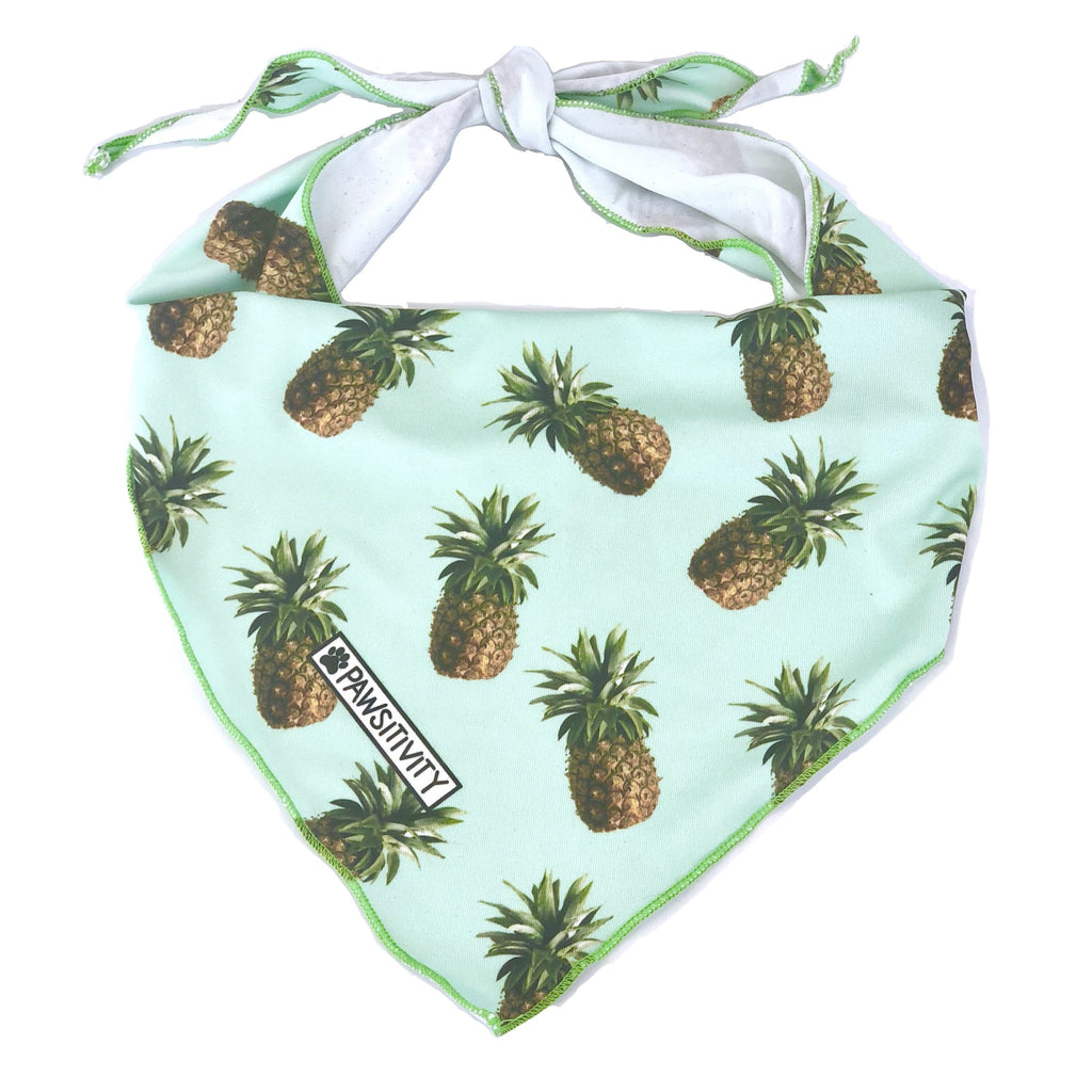 Pawsitivity - Large - Mint Pineapples Bandana