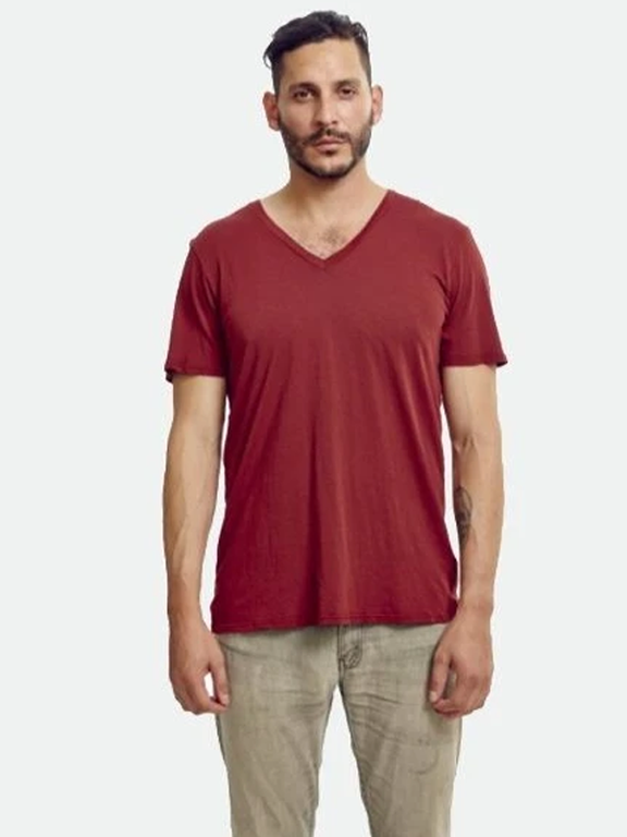 Groceries- Mens Burgundy V-neck tee