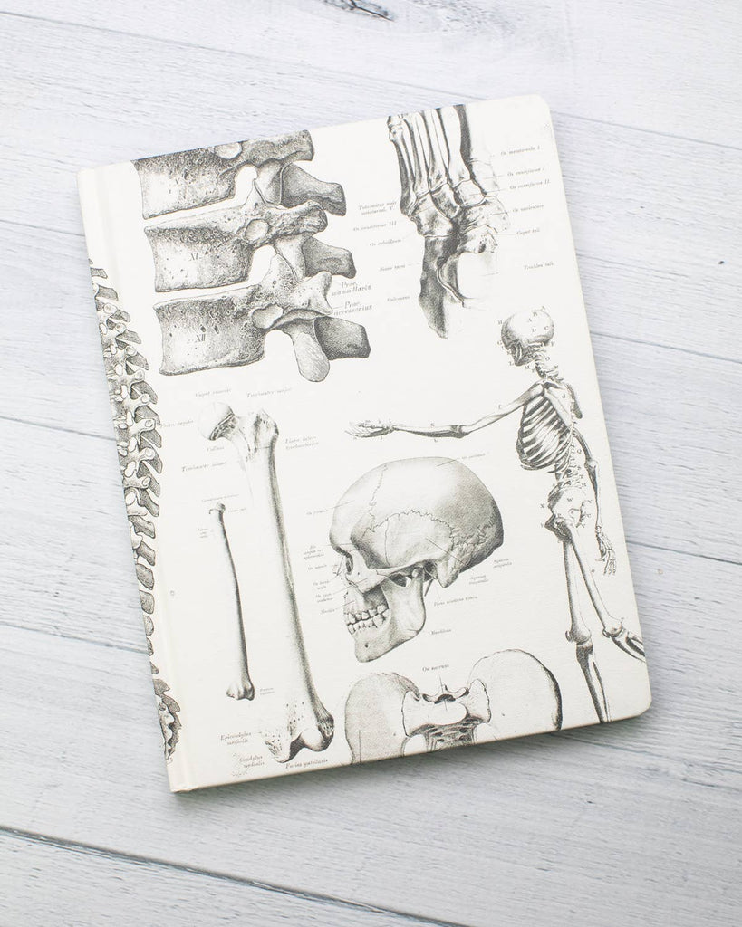 Cognitive Surplus - Skeleton Hardcover Lined/Grid