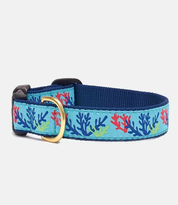 Upcountry Coral dog collar