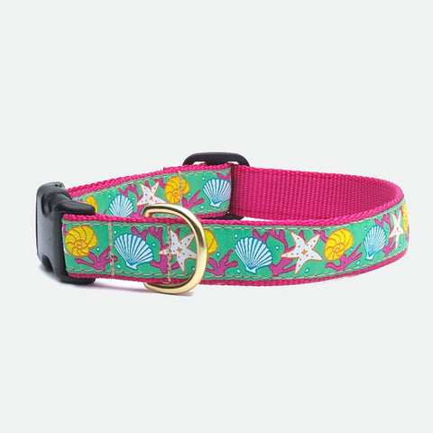 Upcountry Reef dog collar