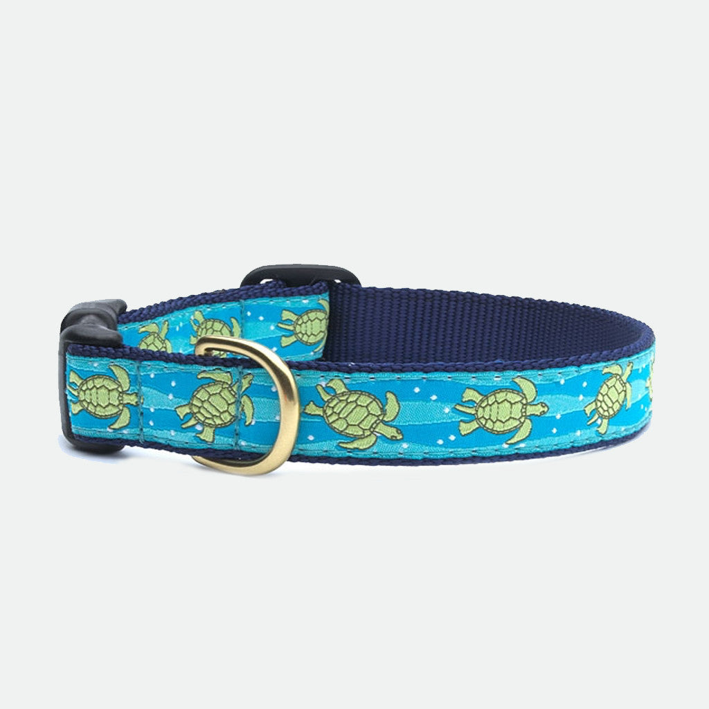 Upcountry Turtle dog collar