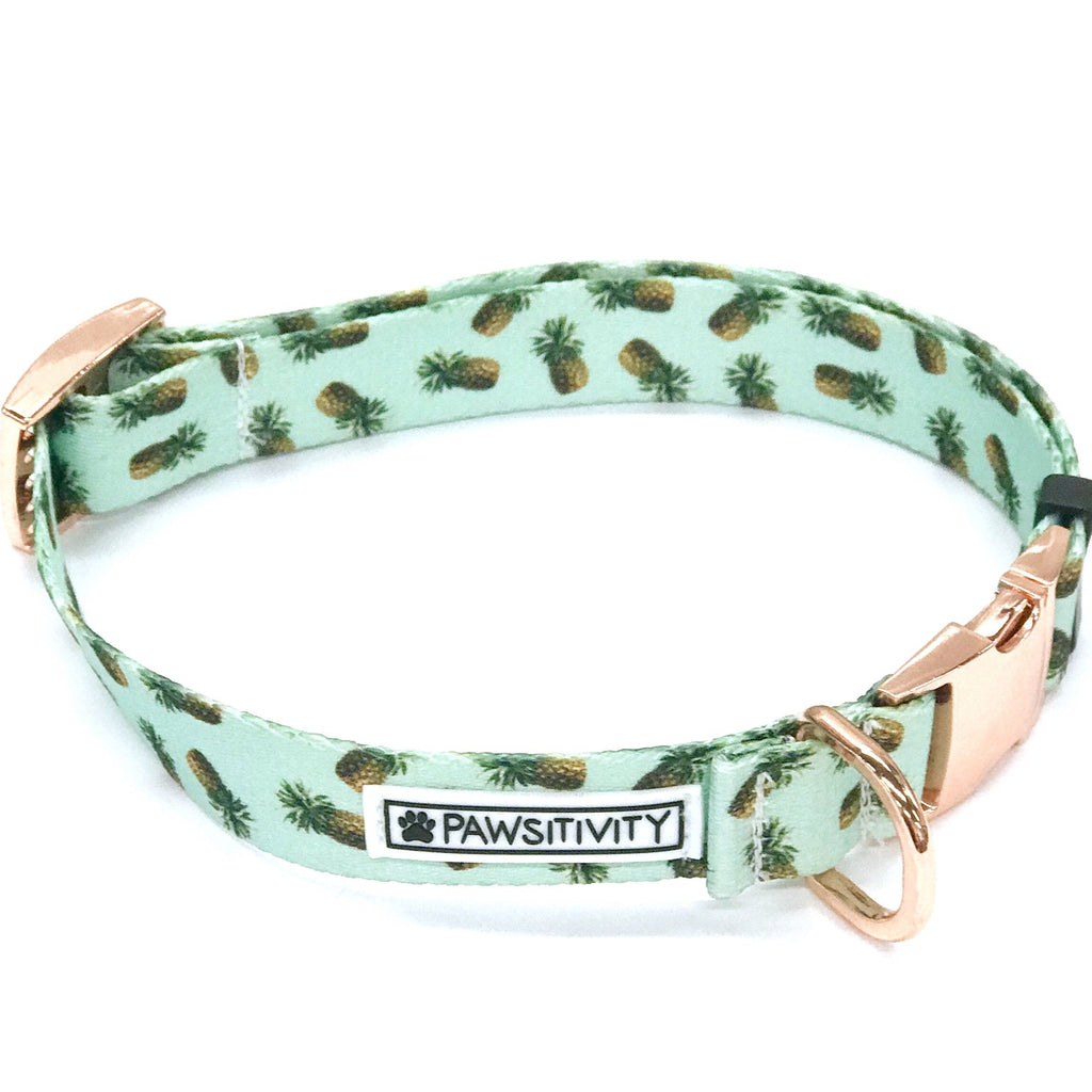 Pawsitivity - Large - Mint Pineapple Collar