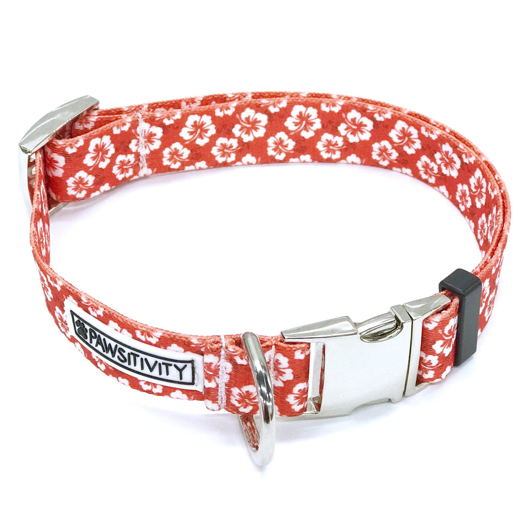 Pawsitivity - Small - Hawaiian Hibiscus Collar