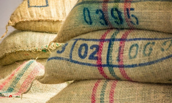 Green coffee in bags ready for shipping, known as jute coffee bags
