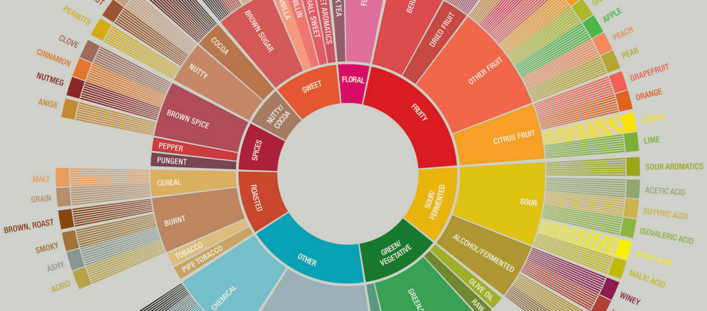 color wheel for coffee flavor chart