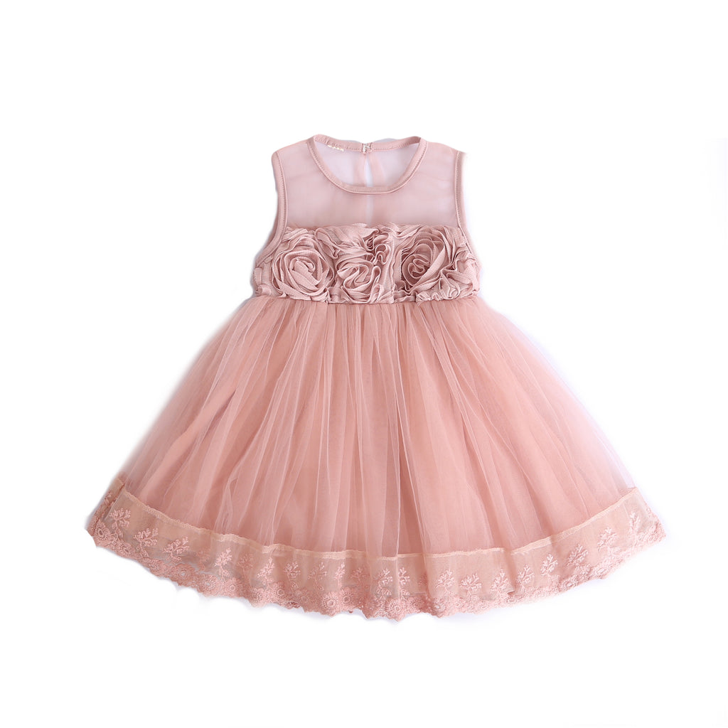 NEW - Amelia ~ Blush Rosette Dress