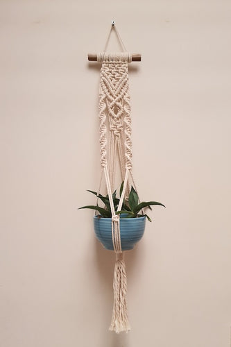 Handcrafted macrame sapling of love plant hanger