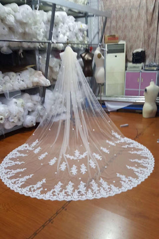 Ivory Lace Tulle Appliques 3D Flowers Wedding Veils