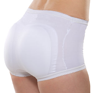 Fantastic Fanny Control Brief
