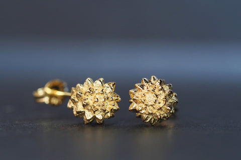 Yellow Sheoak Studs