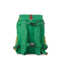 Kids backpack green