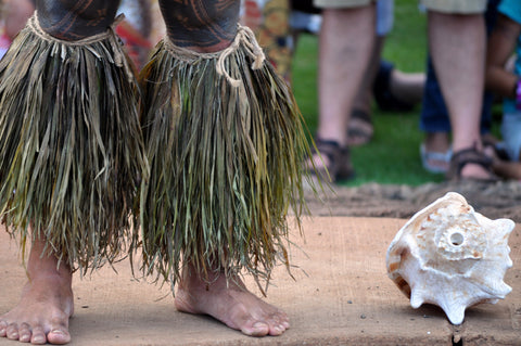 Traditional Hawaiian Awa | Root of Happiness Kava