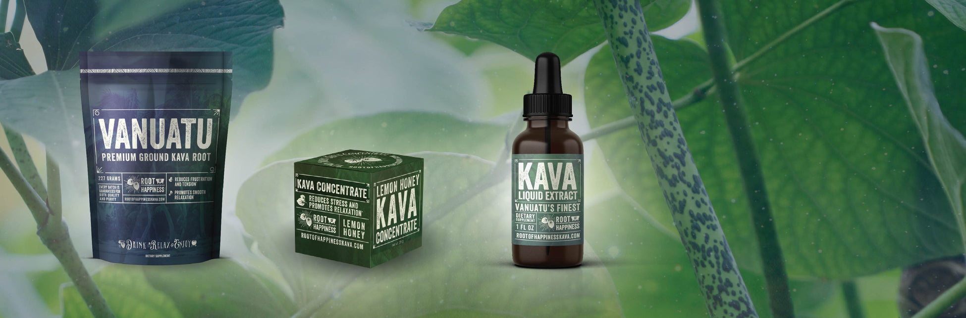 Kava Extract | Kava Root