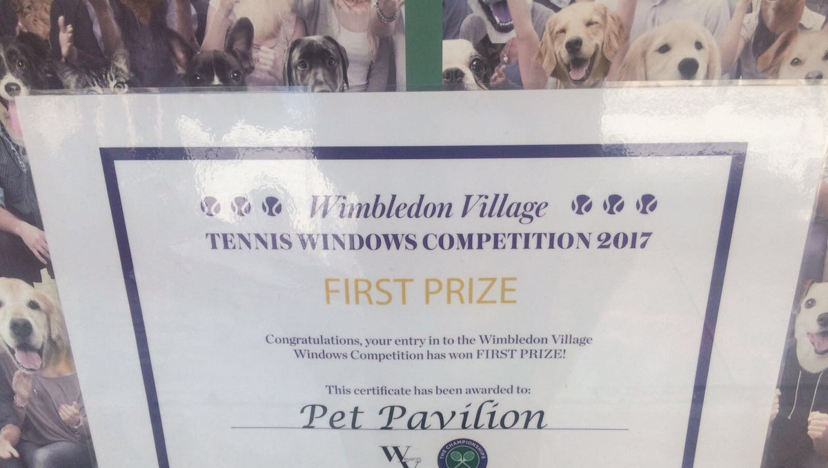 Celebrate our First Prize for our Tennis Window in Wimbledon!