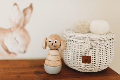Lilu | Wicker Basket | Small | White with Miva Vacov Bella the Dog