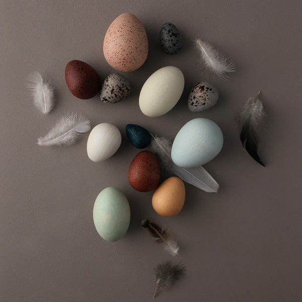 Moon Picnic | A Dozen Bird Eggs in a Box