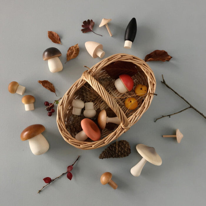 Moon Picnic | Forest Mushrooms Basket