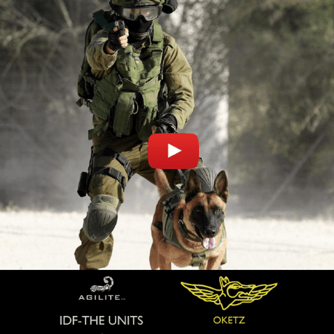 IDF the units - Oketz