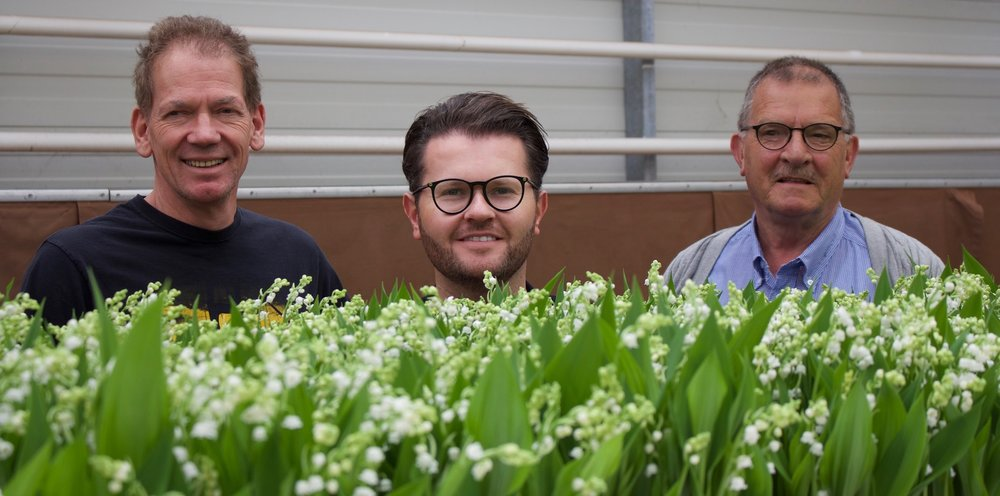 Our Lily of the Valley Grower