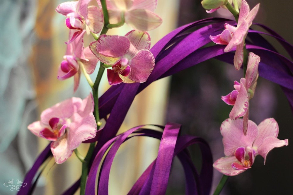 decorated orchid planters Neill Strain.jpg