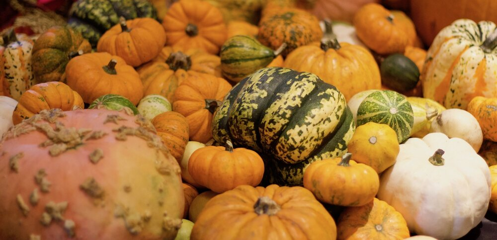 Pumpkins and Gourds at Neill Strain Floral Couture