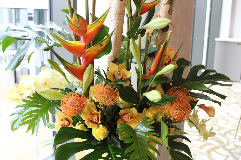 We source our flowers from the very best growers who in turn select their very best blooms for us