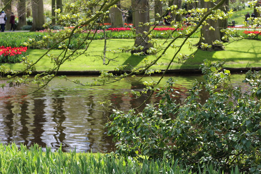 The movement of water adds elegance to the Keukenhof Gardens