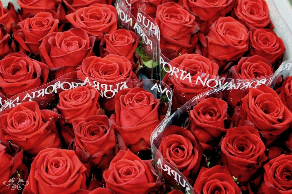 Supra Porta Nova red Roses for Neill Strain Floral Couture London
