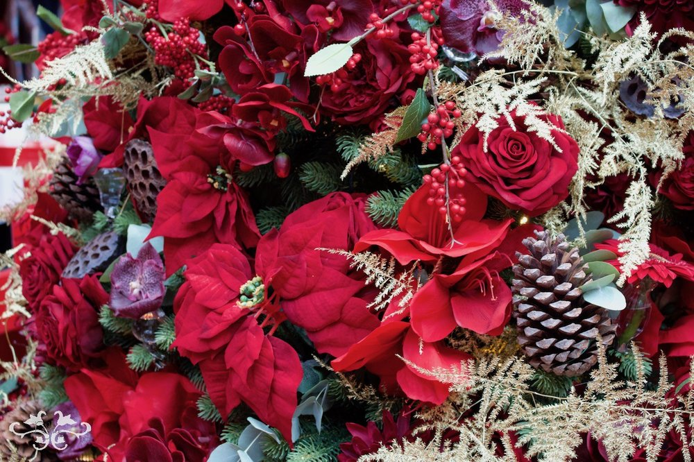 Poinsettias are also popular on the Christmas tree.
