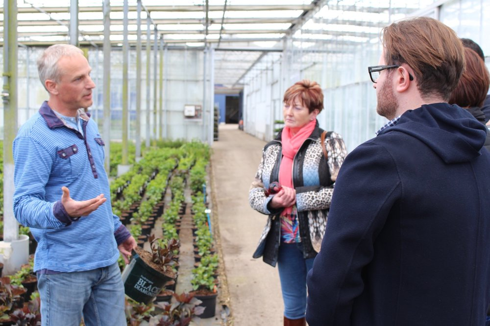 Neill Strain Floral Couture team listen to Arie Blom at Kolster, breeder of new varieties of Hydrangea