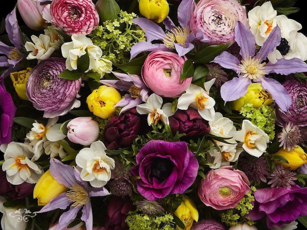 Spring flowers now available to order online at Neill Strain Floral Couture