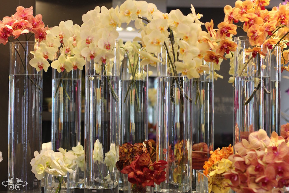 Phalaenopsis and Vanda Orchids on display at Neill Strain Floral Couture during the Chelsea Flower Show.