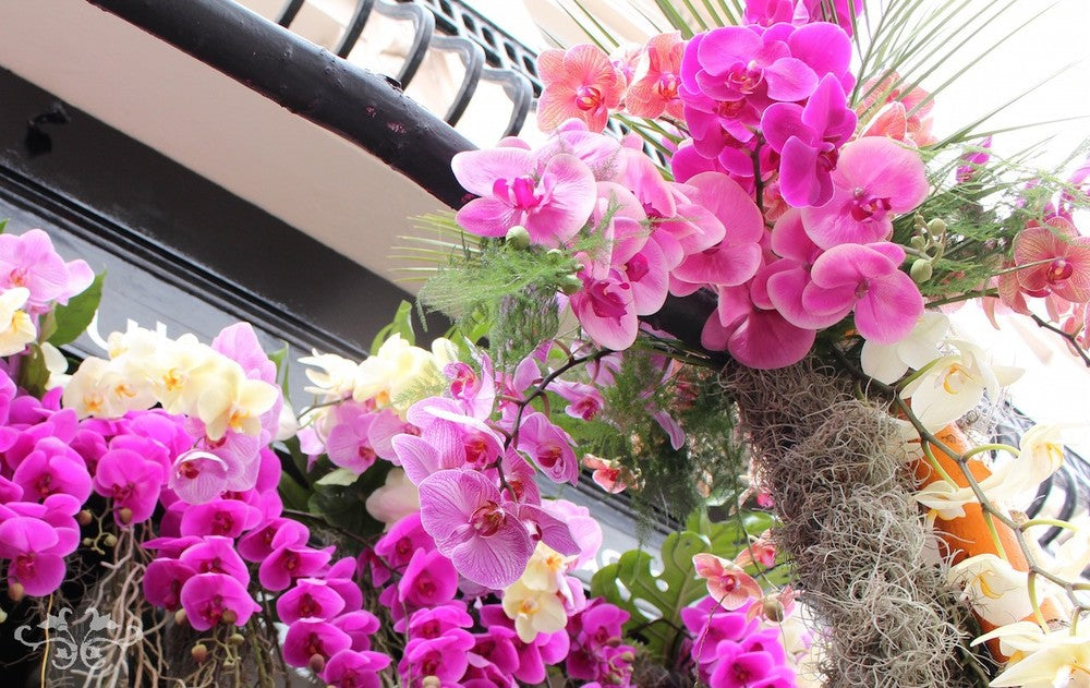 Phalaenopsis Orchids from Ichtus Flowers in Holland embellished Neill Strain Floral Couture for Belgravia in Bloom