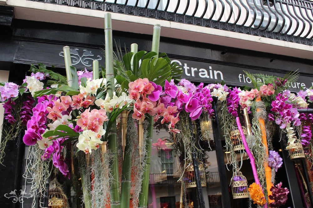 Belgravia chic with Orchids at Neill Strain Floral Couture