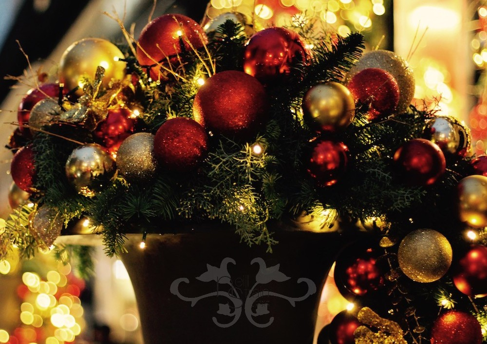 Luxurious, bespoke designs for Christmas by Neill Strain Floral Couture