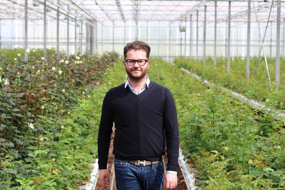 Visiting Holland's best Rose breeders and growers to source blooms for