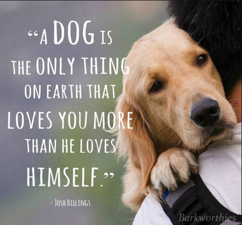 Dog quote and dog hugging man