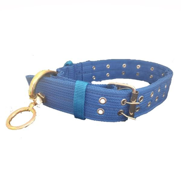 Large Dog Collar with Studs - Blue with gold ring.
