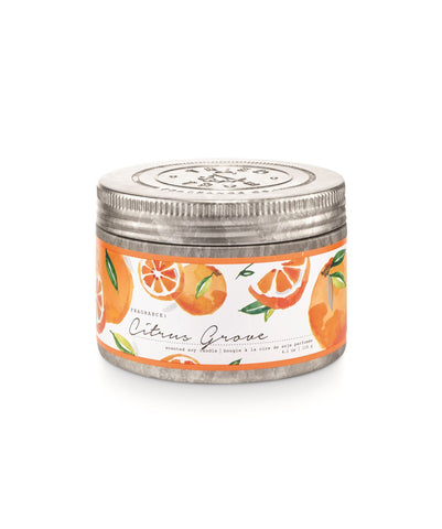 Tried & True Small Tin Candle: Citrus Grove