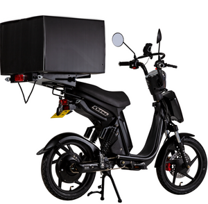 Eskuta SX- 250D Electric Cargo Moped Delivery Bike