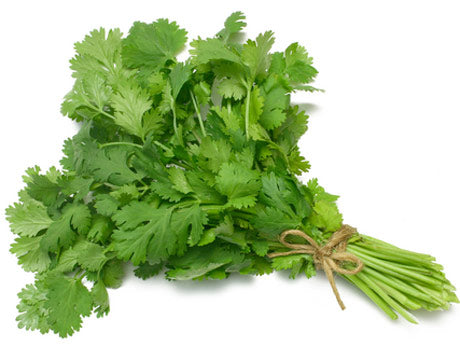 Coriander Fresh 1 banch.
