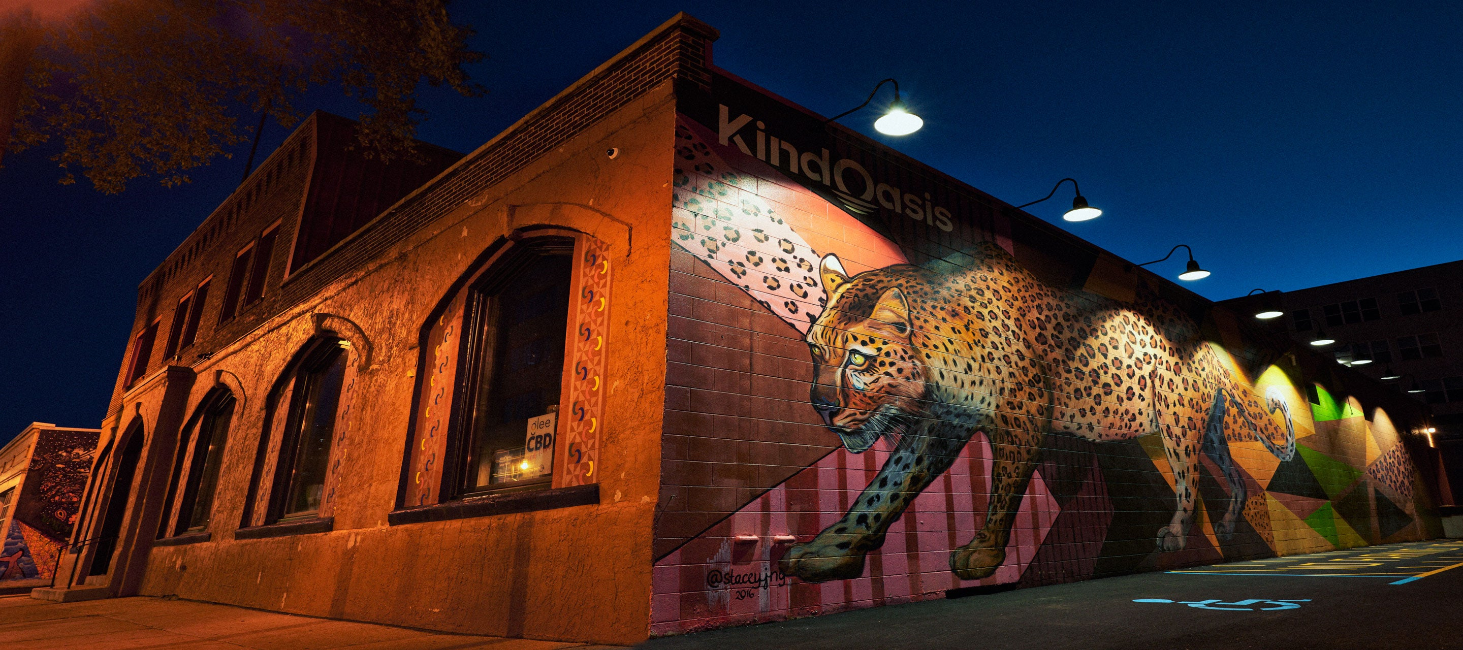 Kind Oasis Mural East Side Milwaukee Contact us CBD WI