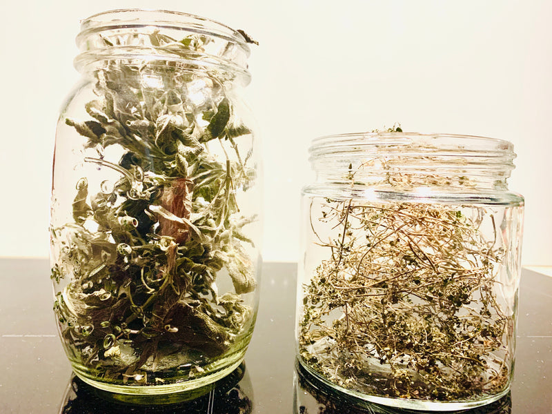Home dried herbs