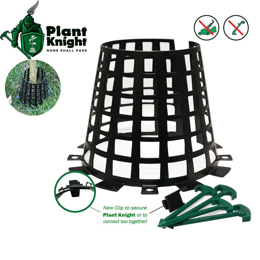 Plant Knight Black 6-Pack
