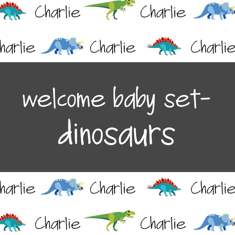 Welcome Baby Set - Dinosaurs